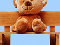 Teddy_auf_Bank